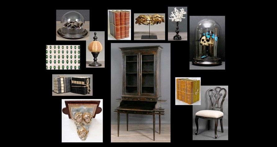 d coration cabinet de curiosit s entomologie et botanique arteslonga. Black Bedroom Furniture Sets. Home Design Ideas